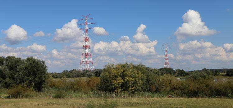 Stromsparen: Die Steckerleiste
