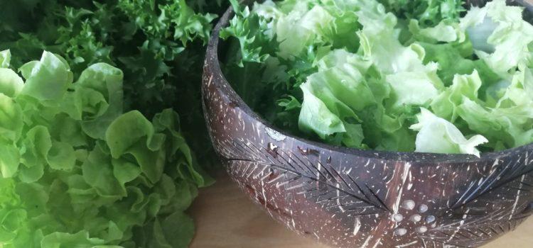 Gesundes Dressing – Das macht den Salat an!